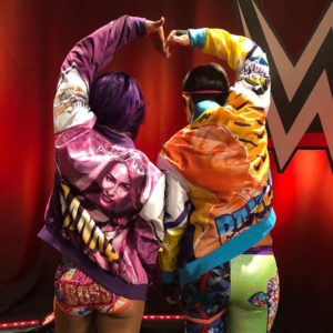RAW UPS AND DOWNS ( 23-07-2018 )