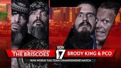 Briscoes vs Villain Enterprises