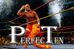 PerfecTen Hulk Hogan
