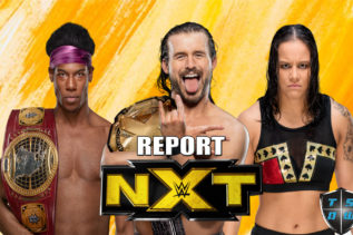 Report NXT