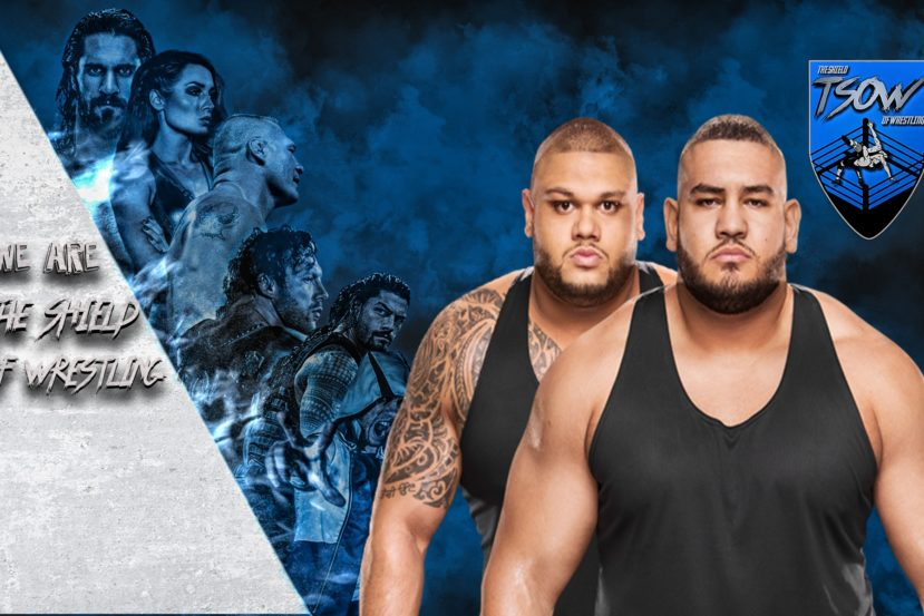 BREAKING: AOP rilasciati dalla WWE