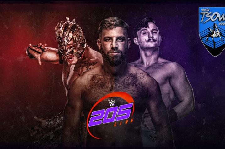 205 Live 25-10-2019 Report