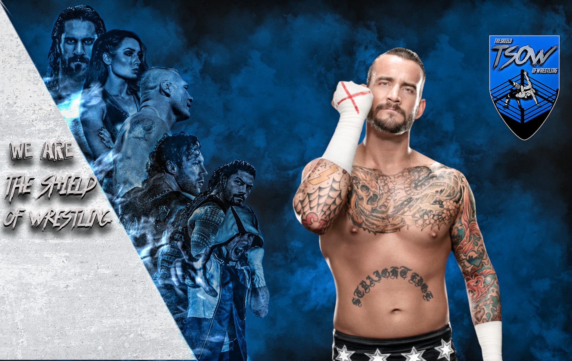 CM Punk in WWE