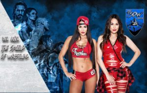 The Bella Twins - SmackDown