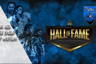 The Bella Twins - WWE Hall Of Fame 2020