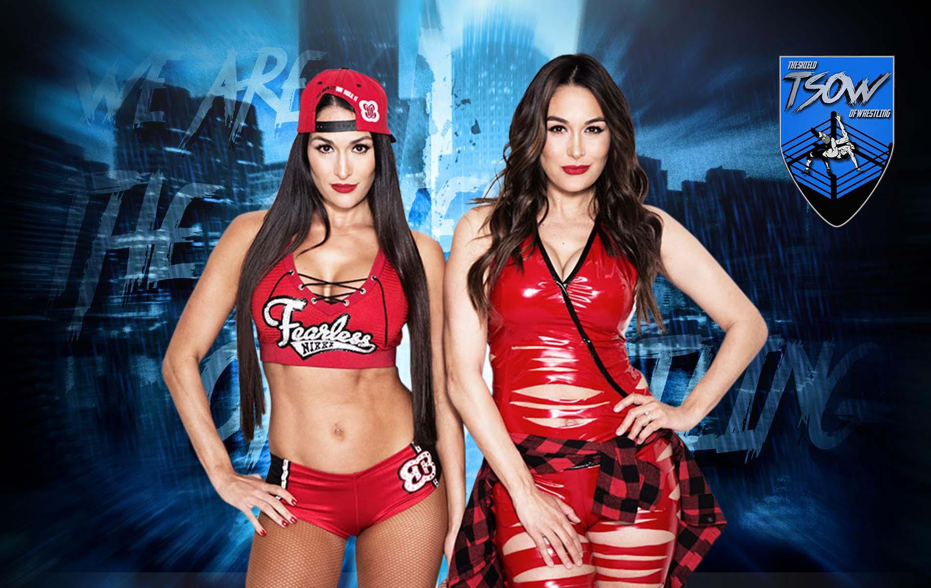 The Bella Twins: addio a Total Bellas?