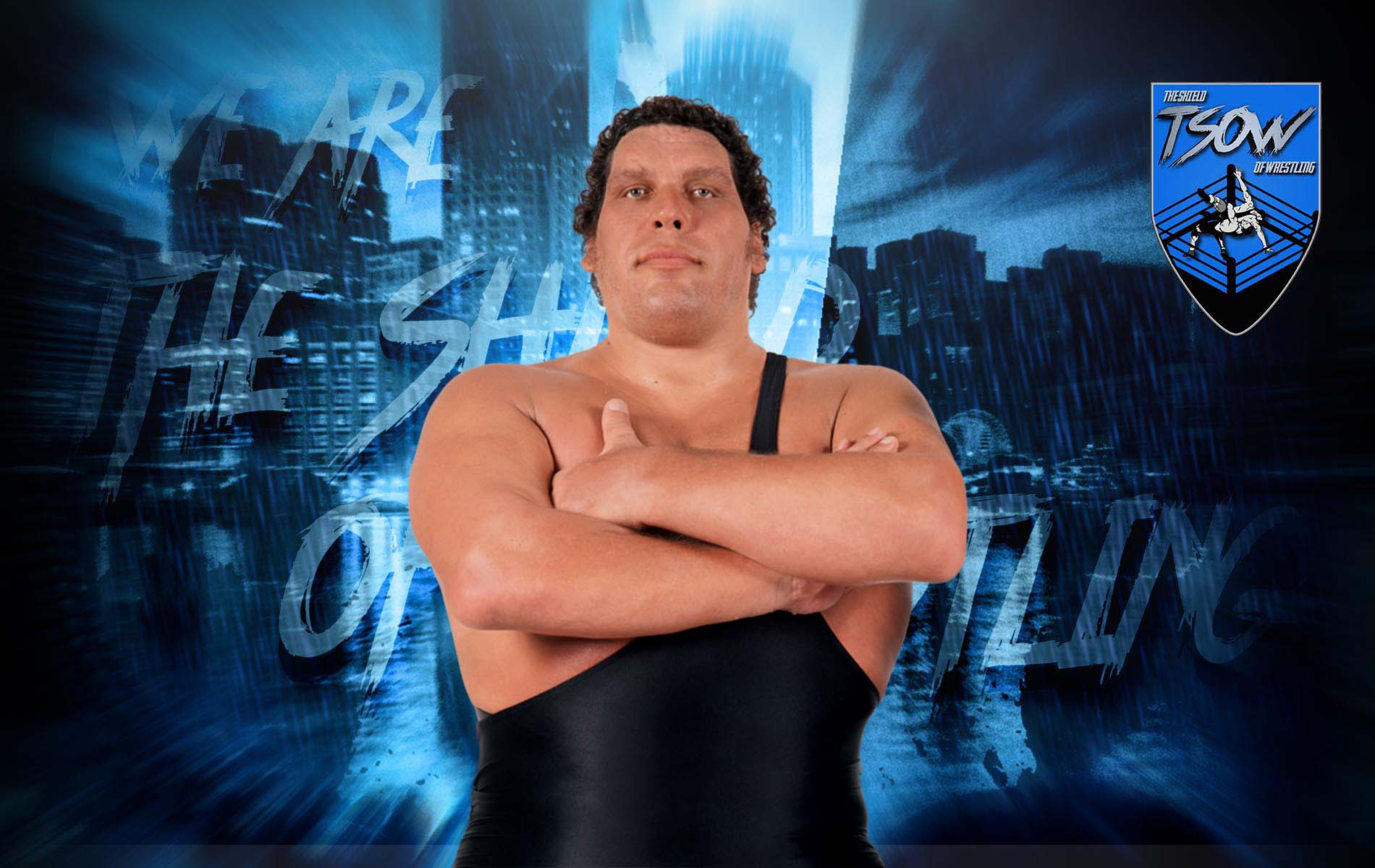 Vince McMahon ricorda Andre The Giant