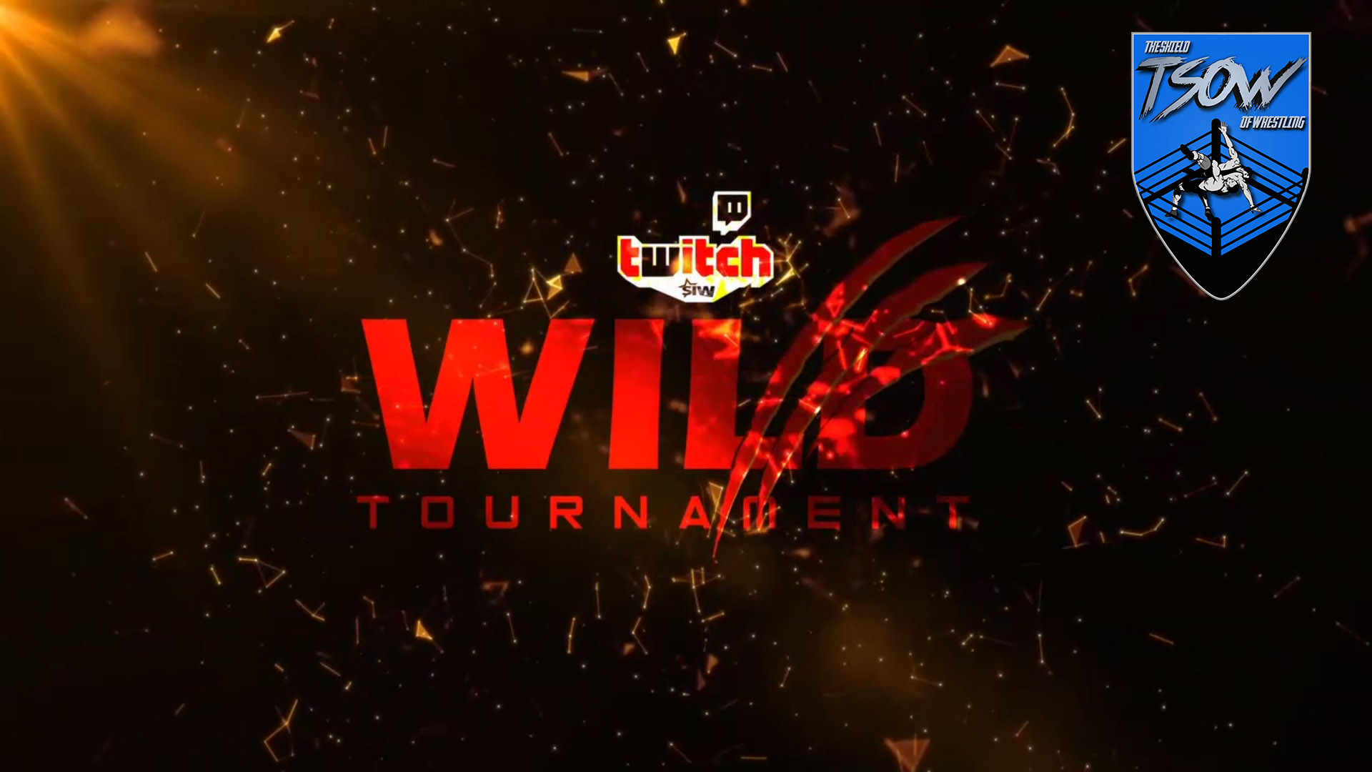 SIW L'Occhio Del Coach 34 Review - Wild Tournament Final
