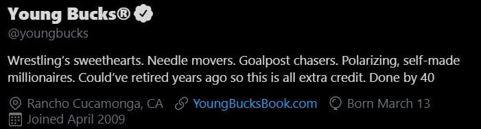 Young Bucks: è già deciso il momento del loro ritiro?